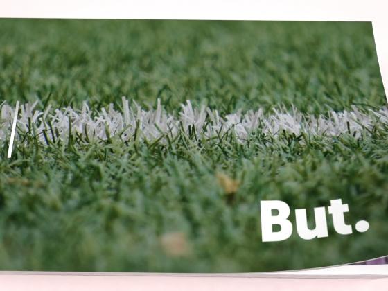 zoom sur flipbook vert pelouse foot but